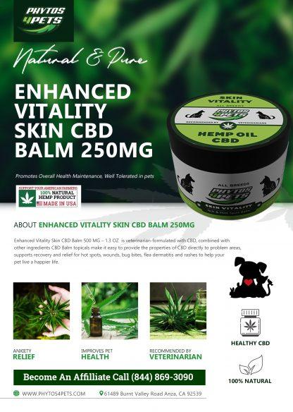 Enhanced Vitality Skin CBD Balm 250mg